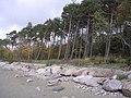 Merivälja - panoramio - Aulo Aasmaa (2).jpg