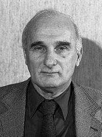 Michiel Hermann von Meyenfeldt (1981).jpg