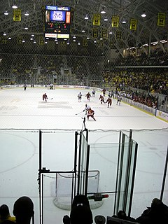 Empty net goal in ice hockey, a goal that occurs with no goaltender present