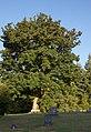 Middleton Pioneer Cemetery vertical - Oregon.jpg