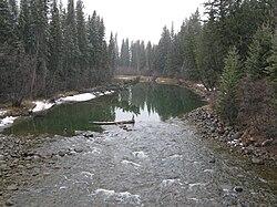 Miette River JNP.JPG