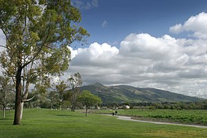 Fremont, California - A view of Mission Peak from Fremont Central Park in 2006.