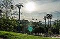Montjuich cable car (2014) - panoramio.jpg