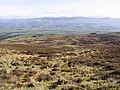 Moorland hillside - geograph.org.uk - 399857.jpg