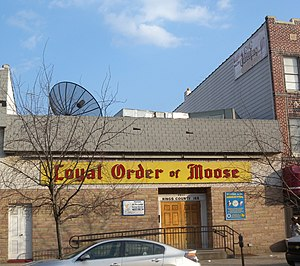 Loyal Order of Moose - Lodge 168, Brooklyn, New York
