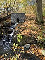 Mount Royal stream.jpg