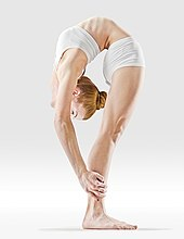 Mr-yoga-reverse-facing-intese-stretch.jpg