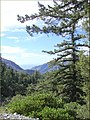 Mt Baldy, Canyon 2-16-13a (8536507051).jpg