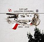 Mural 100 lat lotnictwa polskiego.jpg