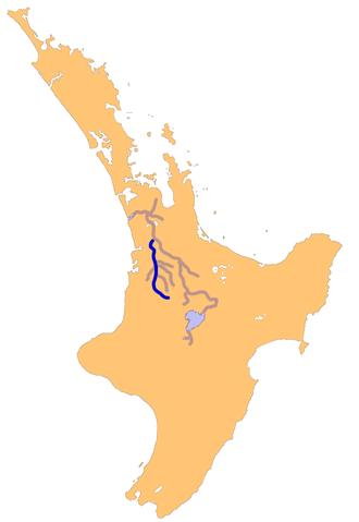 Waipa River - The Waipa River - The Waikato's largest tributary