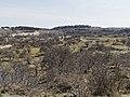 Nationaal Park Kennemerland (26498107367).jpg