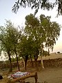 Navidhand End 36 - panoramio.jpg