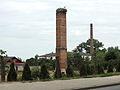 Nest-chimney-ciconia-ciconia.JPG
