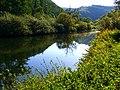 Nettles - panoramio.jpg