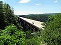 New River Gorge Bridge WV 8474 (7534829926).jpg