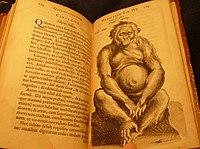Nicolaes Tulp - Wikipedia