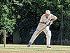 Nuthurst CC v. Henfield CC at Mannings Heath, West Sussex, England 028.jpg