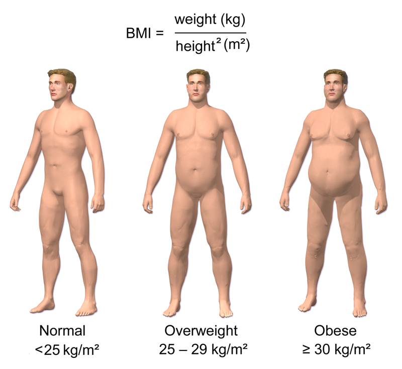 Obesity %26 BMI.png