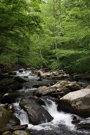 Oconaluftee river, North Carolina