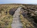Offa's Dyke Path - geograph.org.uk - 1728443.jpg