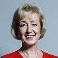 Official portrait of Andrea Leadsom crop 3.jpg