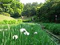 Oike-Park03.jpg