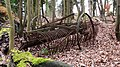 Old agricultural machinery in wood near Hascombe - geograph.org.uk - 1180217.jpg