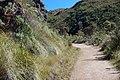 Old road to Prateleiras trail^ - panoramio (1).jpg
