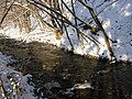 Olešná, Metylovice, horní tok 13.jpg