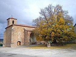 Olmo de la Iglesia.jpg