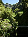 On the way to 25 Fontes Falls 3.JPG