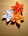 Origami flower - Carambola.JPG