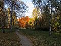 Orlyatko park, Kiev1.JPG