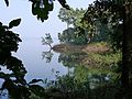 P1120353 - Flickr - gailhampshire.jpg