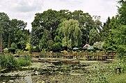 PL-PK Bolestraszyce, arboretum 2011-06-16--12-48-51-050.jpg