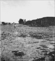 PSM V82 D479 Desolate main street in mexican adobe town in the desert.png