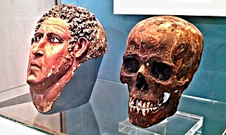 Lime plaster - Painted Lime Plaster Mask and Skull of a Man - British Museum