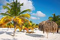 Palm trees and a bech umprella at the Sirena beach at Cayo Largo.jpg
