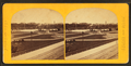 Panoramic view Public Garden, from Robert N. Dennis collection of stereoscopic views 4.png