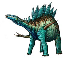 A long-necked dinosaur standing on four legs. The back has numerous bony plates extending upward.