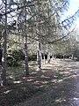 Parco provinciale.jpg