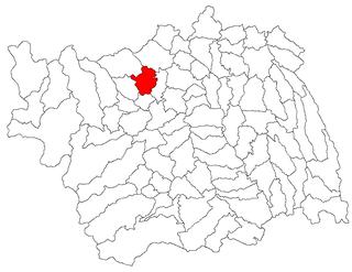 Pârjol Commune in Bacău, Romania