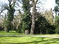 Park-Sanssouci-11-03-2007-016.jpg