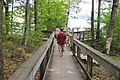 Parque Gatineau - Senderos Pink Lake (9809568025).jpg