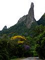 Parque Nacional Serra Dos Órgãos - Dedo De Deus - Estrada.jpg