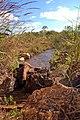 Parque Nacional de Brasília (14358922220).jpg
