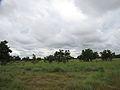Parque nacional Aguaro-Guariquito 024.jpg