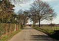 Part of Coggeshall Road - geograph.org.uk - 720147.jpg