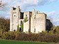 Passy-les-Tours-FR-58-château-06.jpg