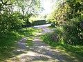 Path Down from St Elidyr's Church, Ludchurch - geograph.org.uk - 1342384.jpg